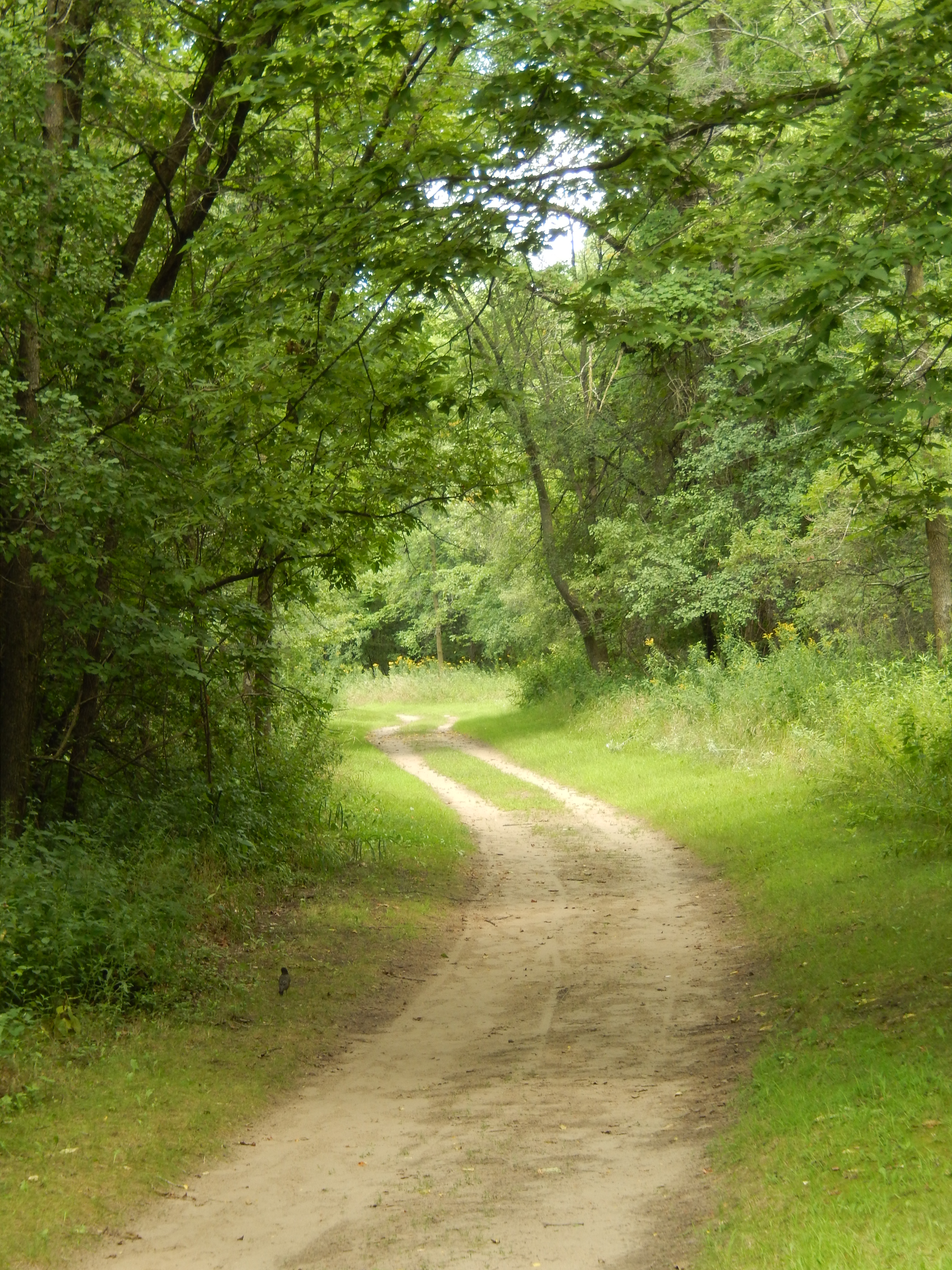 Finding Quiet Places To Pray   Prayer A to Z